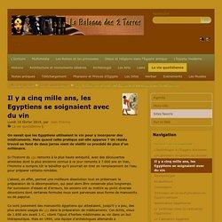 Il y a cinq mille ans, les Egyptiens se soignaient avec du vin