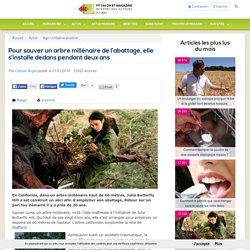 Pour sauver un arbre millénaire de l'abattage, elle s'installe dedans pendant deux ans
