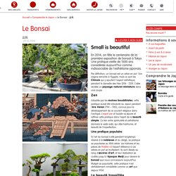 LE BONSAI, un art millénaire