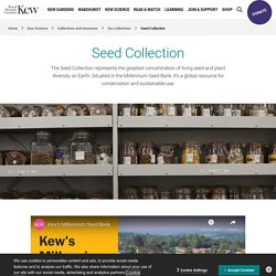 Millennium Seed Bank Partnership - Saving Plants For Our Future