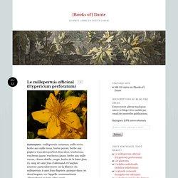 Le millepertuis officinal (Hypericum perforatum)