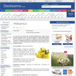 Millepertuis (Hypericum perforatum) : propriétés, bienfaits de cette plante en phytothérapie