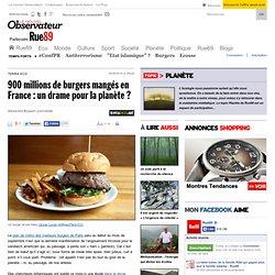 900millions de burgers mangés en France: un drame pour la planète?