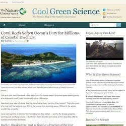 Coral Reefs Soften Ocean's Fury for Millions of Coastal Dwellers