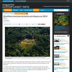 18 millions hectares de forêts ont disparu en 2014