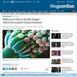 Millions at risk as deadly fungal infections acquire drug resistance