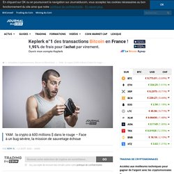 YAM : la crypto à 600 millions $ dans le rouge - Face àunbugsévère,lamissiondesauvetageéchoue