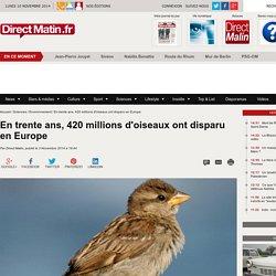 En trente ans, 420 millions d'oiseaux ont disparu en Europe