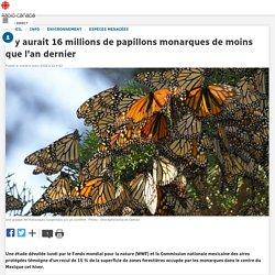 Il y aurait 16 millions de papillons monarques de moins que l'an dernier