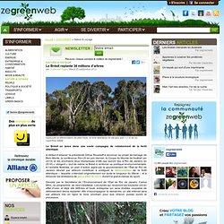 34 millions d'arbres plantés au Brésil