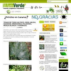 oidio, mildiu, gusanos, minadores, pulgones, mosca blanca y hormigas. ~ Mi azotea verde
