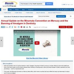 Minamata Convention on Mercury: Banning of Amalgam in Dentistry