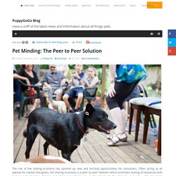 Pet Minding: The Peer to Peer Solution - PuppyGoGo Blog
