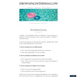 drowningintheshallow