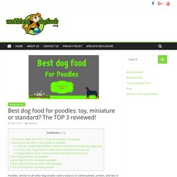 Best dog food for poodles: toy, miniature or standard? The TOP 3 reviewed!
