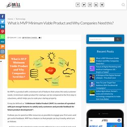 What is MVP Minimum Viable Product and Why Companies Need this?