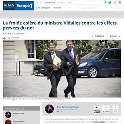 La froide colère du ministre Vidalies contre les effets pervers du net