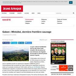Gabon : Minkébé, dernière frontière sauvage