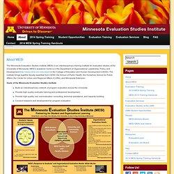About MESI » Minnesota Evaluation Studies Institute