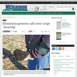Minnesota growers call cover crops 'amazing'