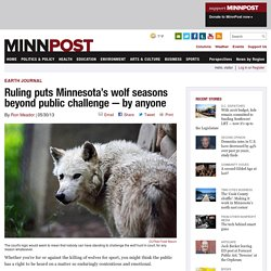 Court rules wolf seasons beyond public challenge