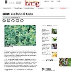 Mint: Medicinal Uses