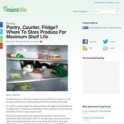 Pantry, Counter, Fridge? Where To Store Produce For Maximum Shelf Life