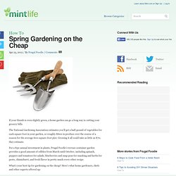 Spring Gardening on the Cheap
