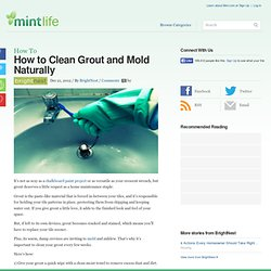 How to Clean Grout and Mold Naturally