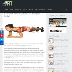 4 Minutes and 28 Days to a Changed Body! - Go Fit Stay Fit