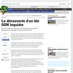 La découverte d un blé OGM inquiète