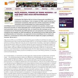 Maïs MIR604, pomme de terre Modena: le HCB émet des avis défavorables