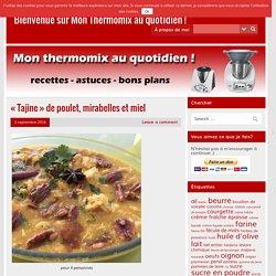 «Tajine» de poulet, mirabelles et miel – Bienvenue sur Mon Thermomix au quotidien !