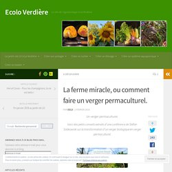 La ferme miracle, ou comment faire un verger permaculturel. – Ecolo Verdière