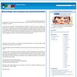 Mirmecologia: dove comprare una colonia di formiche? - ItalianBloggers