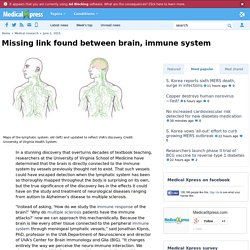 Missing link found between brain, immune system