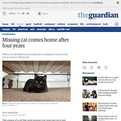 Missing cat comes home after four years
