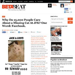 Why Do 15,000 People Care About a Missing Cat At JFK? One Word: Facebook.