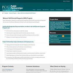 Public Partnerships (PPL)