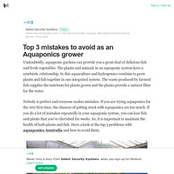 Top 3 mistakes to avoid as an Aquaponics grower