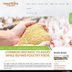 Common Mistakes to Avoid while buying Poultry Feeds