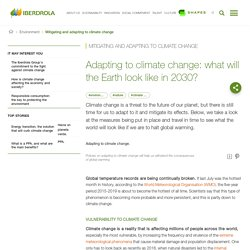 All about Climate Change Mitigation and Adaptation - Iberdrola