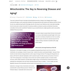 Mitochondria: The Key to Reversing Disease and Aging? - Blog