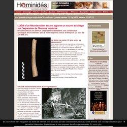 ADN mitochondrial Sapiens / Néandertal