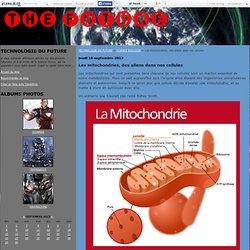 Les mitochondries, des aliens dans nos cellules - TECHNOLOGIE DU FUTURE