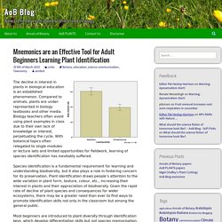 Mnemonics are an Effective Tool for Adult Beginners Learning Plant Identification - AoB Blog