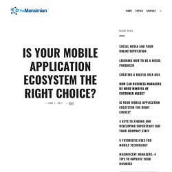 Is Your Mobile Application Ecosystem the Right Choice?