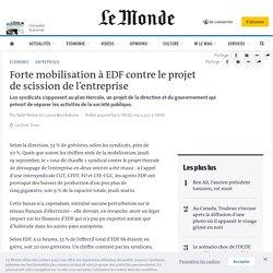 Forte mobilisation à EDF contre le projet descission de l'entreprise