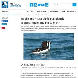 Mobilisons-nous pour le maintien de l'équilibre fragile du milieu marin