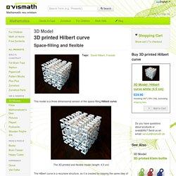 3D Model: 3D printed Hilbert curve